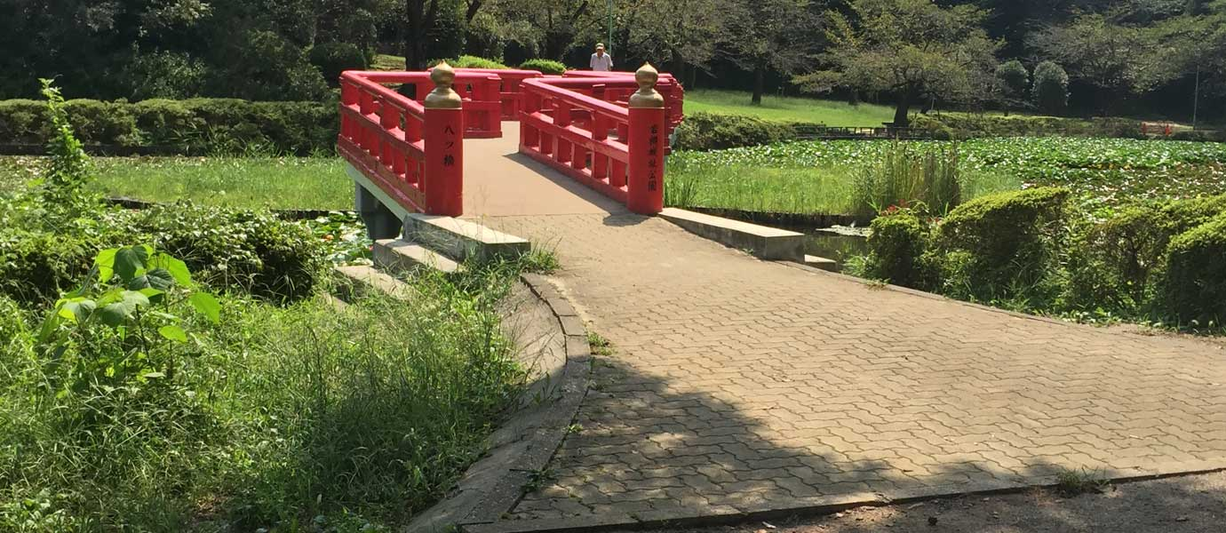 Japenese Bridge